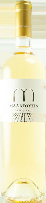 Malagouzia 2020 - Mpougiouris Estate