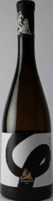 5 + 1 Feggaropetra 2020 - Andreou Winery